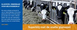 Glasvezel onmisbaar voor melkveebedrijf